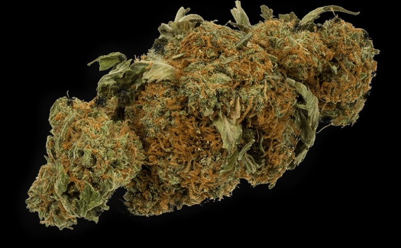 Where To Buy Weed In Canada: Online Store Is Your Answer