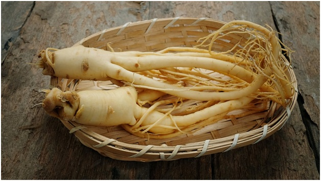 Types of Ginseng You Need to Know about
